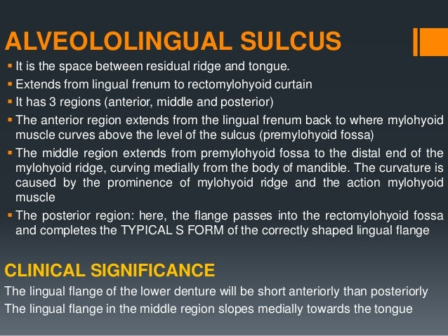ALVEOLOLINGUAL SULCUS- RETROMYLOHYOID CURTAIN  Formed posteriorly by the superior constrictor muscle, laterally by the ma...