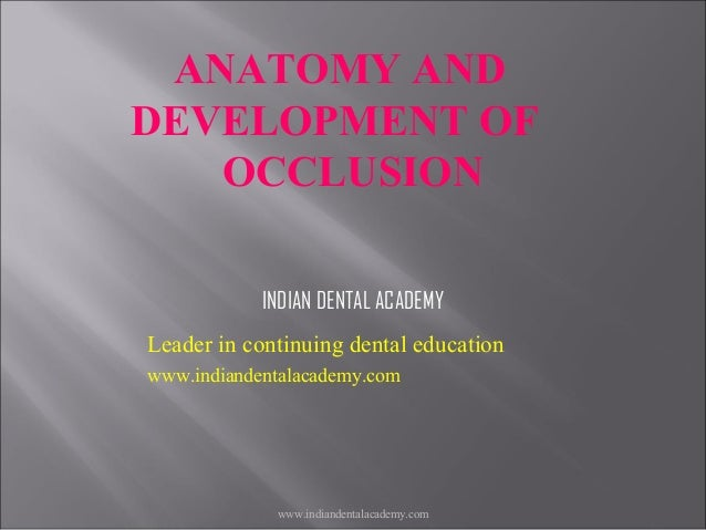 ANATOMY AND DEVELOPMENT OF OCCLUSION INDIAN DENTAL ACADEMY Leader in continuing dental education www.indiandentalacademy.c...