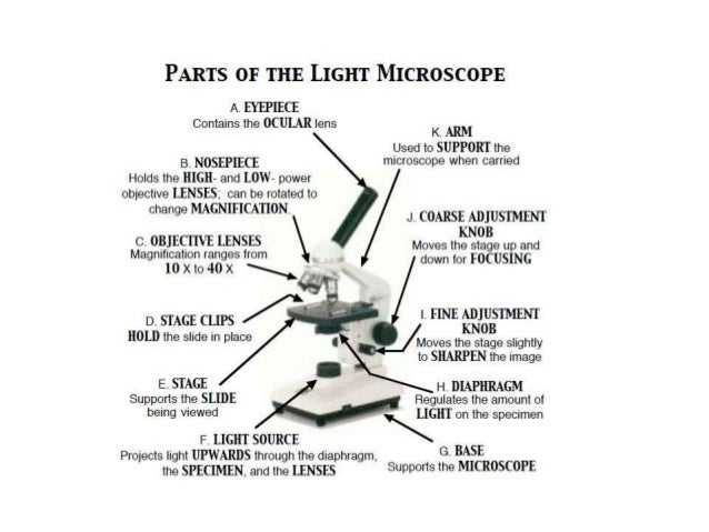 different types of microscopes and their functions pdf