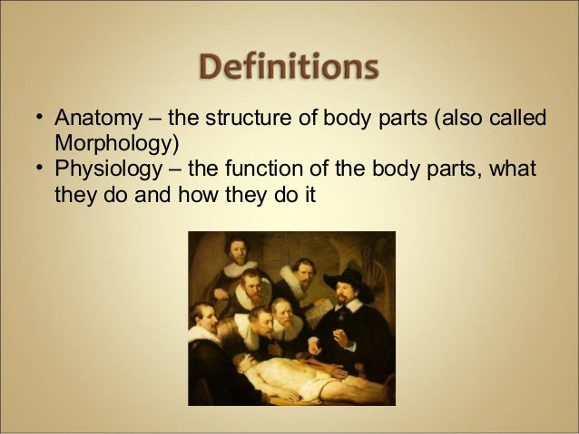 physiology chapter 1 notes Anatomy and physiology quizzes buy download share home chapter 1 : anatomy and literature notes test prep.