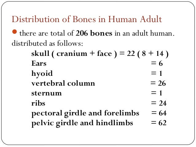 anatomy and physiology final(let), Cephalic Vein