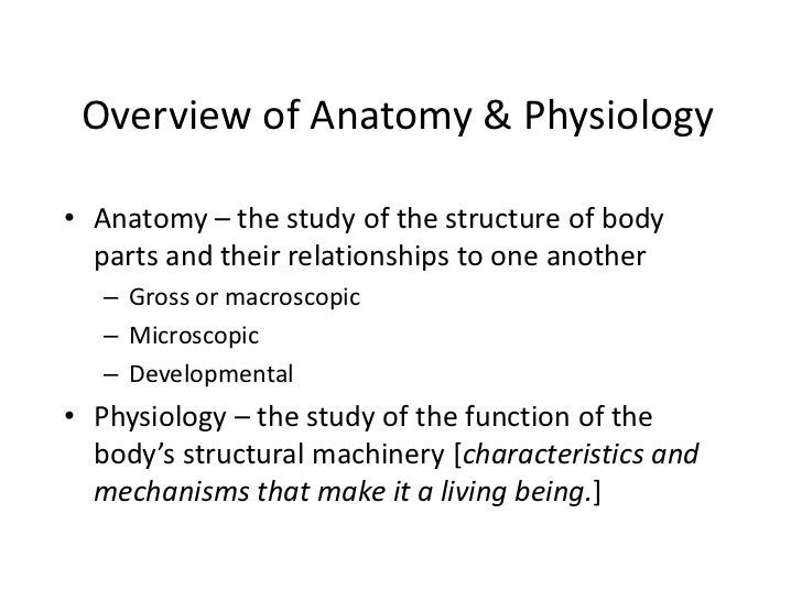 anatomy and physiology for yoga students 45