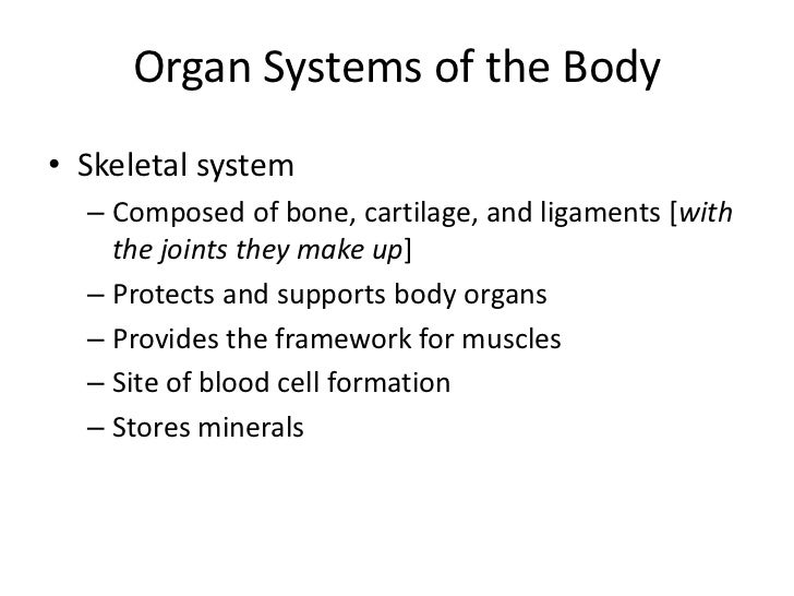 Organ Systems of the Body• Female reproductive system  – Composed of mammary glands, ovaries, uterine    tubes, uterus, an...