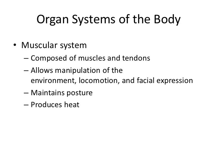 Organ Systems Interrelationships• The integumentary system  protects the body from the  external environment• Digestive an...