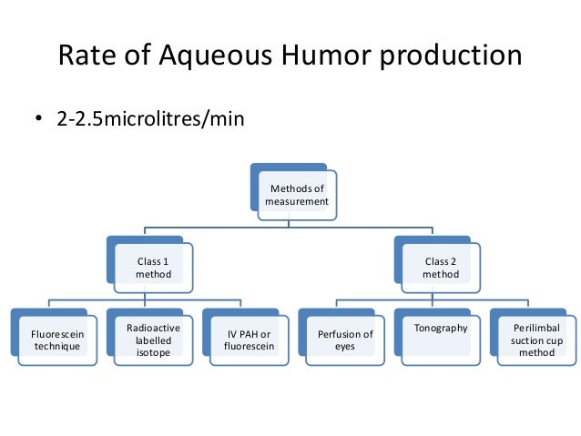 aqueous humor formation essay Learn more about aqueous humour  the neural control of aqueous humor formation aqueous humor is a transparent nutritional fluid that supplies nutrients to those .