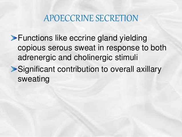 merocrine secretion career t anatomy and physiology