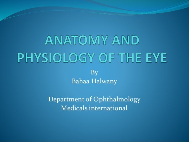 anatomy physiology of the eye Even though the eye is small, only about 1 inch in diameter, it serves a very important function -- the sense of sight learn about the anatomy and physiology of the.