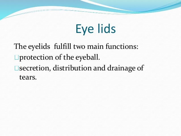 anatomy and physiology of the eye pdf