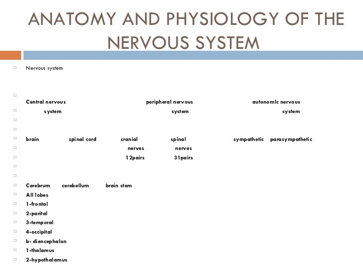Anatomy And Physiology The Nervous System Coursework Example