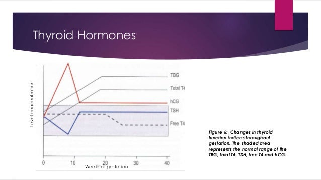 Thyroid Hormones  Figure 6: Changes in thyroid  function indices throughout  gestation. The shaded area  represents the no...