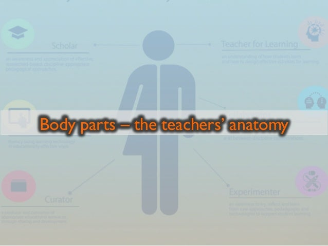 Body parts – the teachers' anatomy