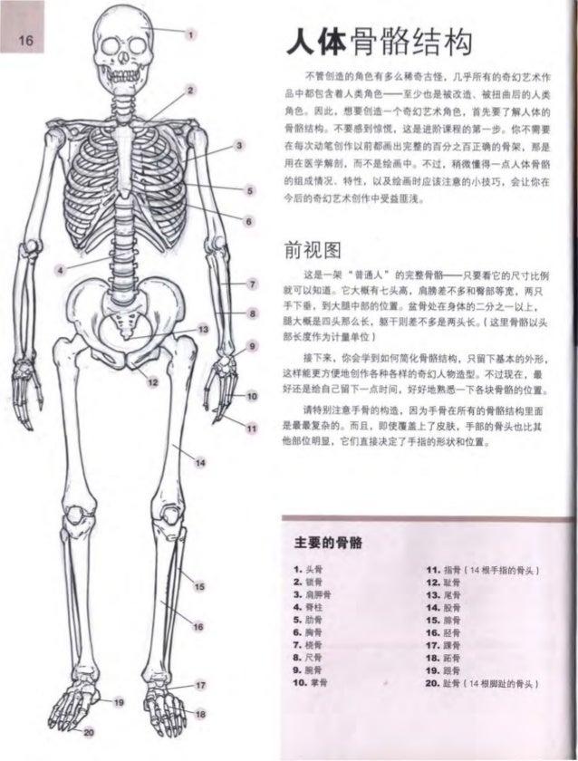Tolle Menschliche Anatomie Und Physiologie Marieb 9. Auflage ...