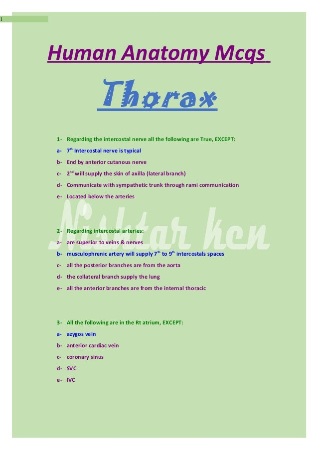 Anatomy mcqs thorax