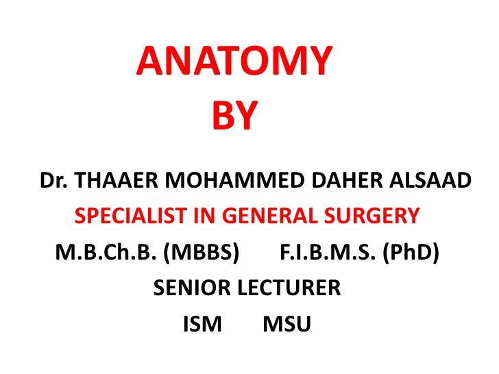 ANATOMYBY<br />   Dr. THAAER MOHAMMED DAHER ALSAAD<br />SPECIALIST IN GENERAL SURGERY<br />M.B.Ch.B. (MBBS)       F.I.B.M....