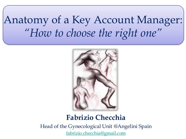 Anatomy of a key account manager