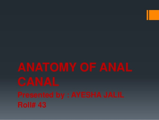 ANATOMY OF ANAL CANAL Presented by : AYESHA JALIL Roll# 43