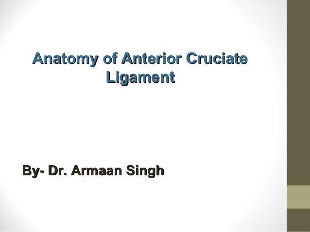 Anatomy of Anterior CruciateAnatomy of Anterior Cruciate LigamentLigament By- Dr. Armaan SinghBy- Dr. Armaan Singh