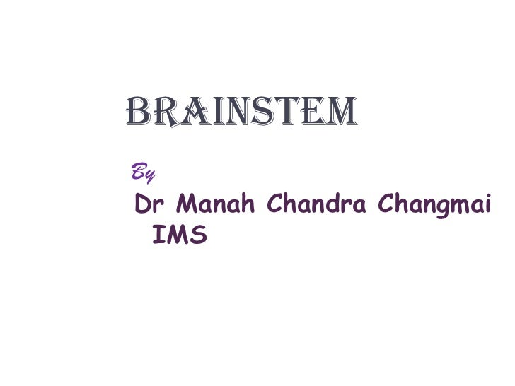 Brainstem<br />By<br />Dr Manah Chandra Changmai<br />    IMS<br />
