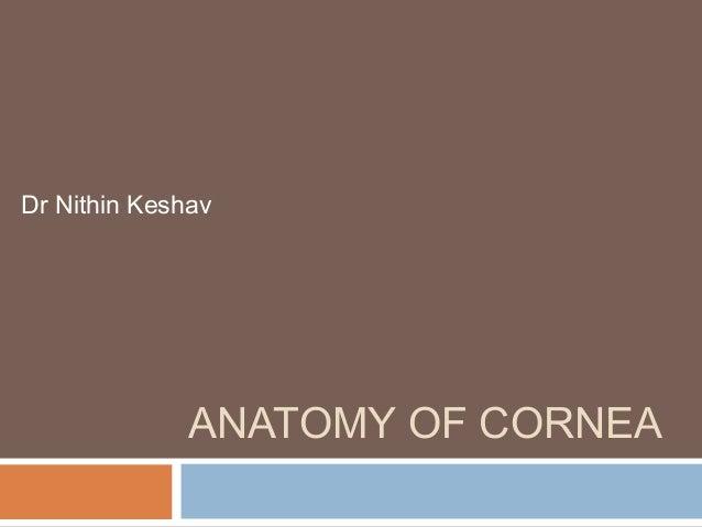 ANATOMY OF CORNEA Dr Nithin Keshav