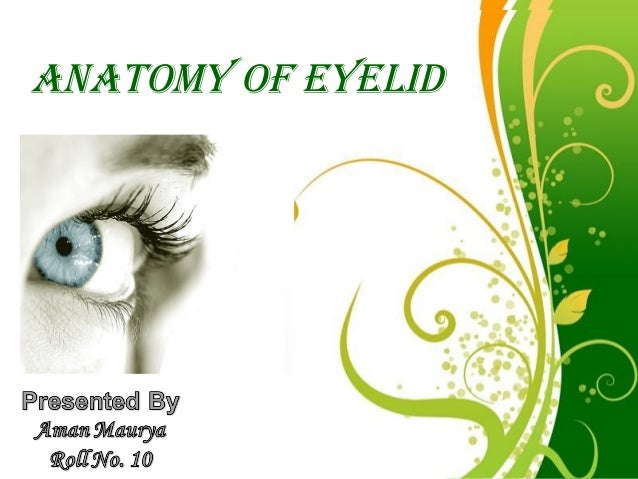 ANATOMY OF EYELID        Free Powerpoint Templates                                    Page 1