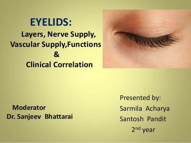 Anatomy Of Eyelids Its Clinical Correlations