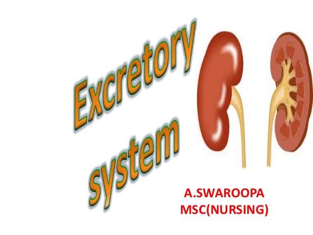 A.SWAROOPA MSC(NURSING)