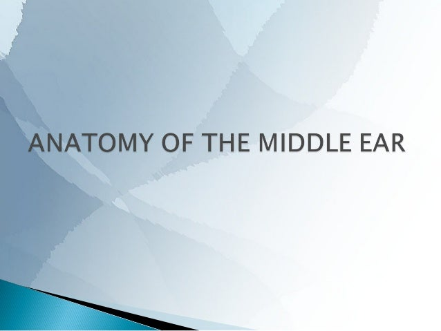       The middle ear cleft consists of the − tympanic cavity, − Eustachian tube and − mastoid air cell system. The tymp...