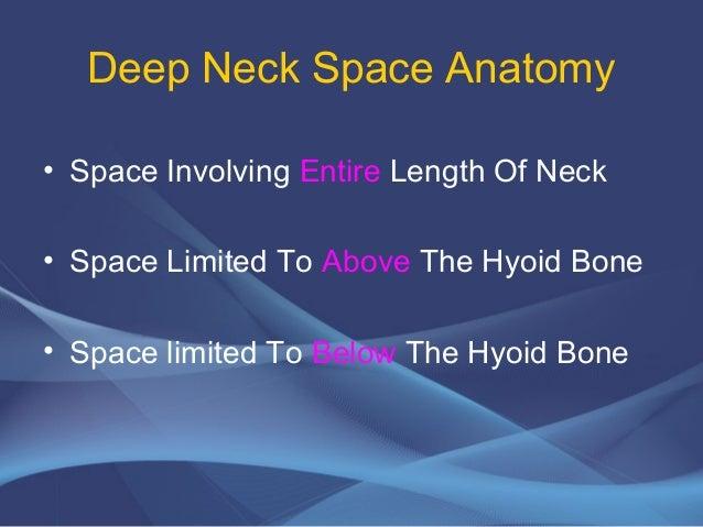 Deep neck spaces anatomy