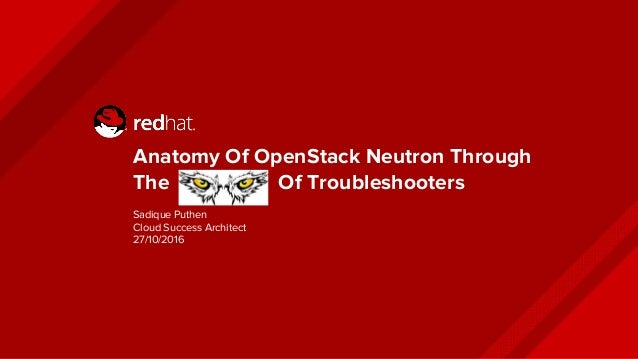 Anatomy of neutron from the eagle eyes of troubelshoorters
