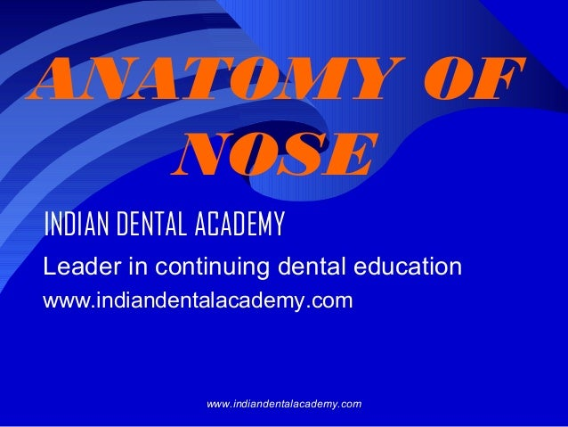 ANATOMY OF NOSE INDIAN DENTAL ACADEMY Leader in continuing dental education www.indiandentalacademy.com  www.indiandentala...