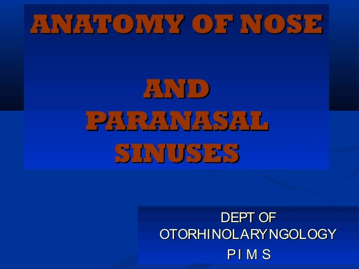 ANATOMY OF NOSE     AND  PARANASAL   SINUSES             DEPT OF      OTORHINOLARYNGOLOGY              PI M S