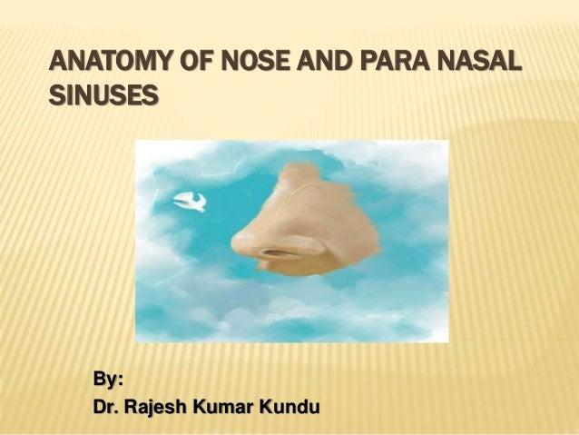 ANATOMY OF NOSE AND PARA NASAL SINUSES By: Dr. Rajesh Kumar Kundu