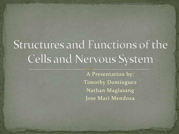 A Presentation by:Timothy Dominguez Nathan Maglasang Jose Mari Mendoza