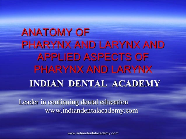 ANATOMY OF PHARYNX AND LARYNX AND APPLIED ASPECTS OF PHARYNX AND LARYNX INDIAN DENTAL ACADEMY Leader in continuing dental ...