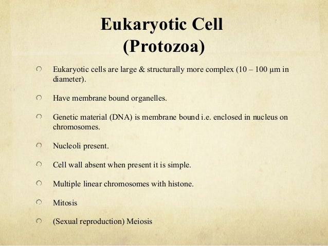 Various - Protozoa 2.0 - Interstellar Evolution