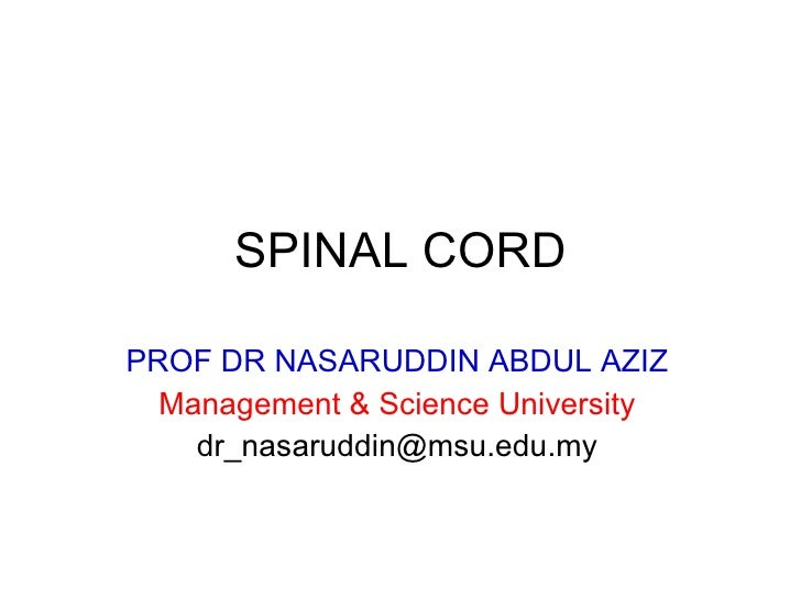 SPINAL CORD PROF DR NASARUDDIN ABDUL AZIZ Management & Science University [email_address]