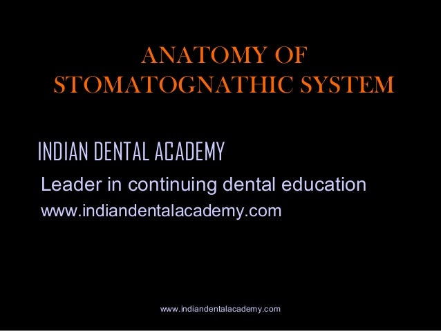 ANATOMY OF STOMATOGNATHIC SYSTEM INDIAN DENTAL ACADEMY Leader in continuing dental education www.indiandentalacademy.com  ...