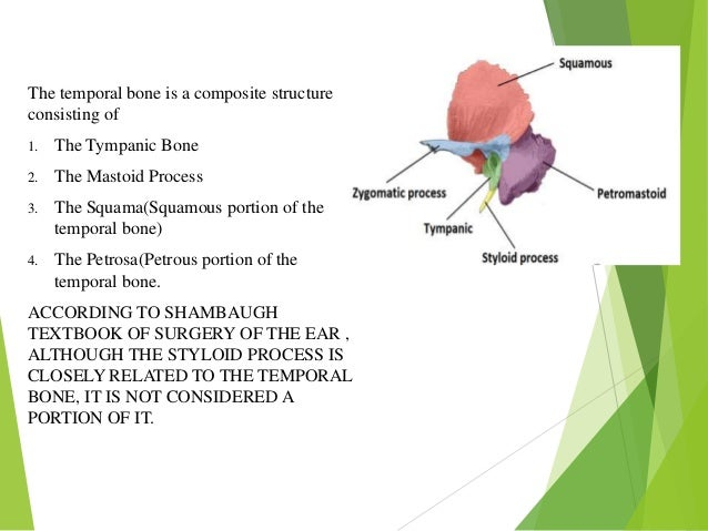 Anatomy Of Temporal Bone And Its Surgical Importance