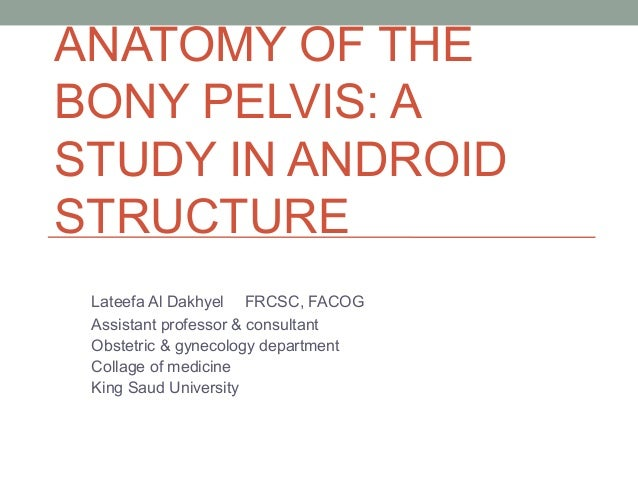 ANATOMY OF THE BONY PELVIS: A STUDY IN ANDROID STRUCTURE Lateefa Al Dakhyel FRCSC, FACOG Assistant professor & consultant ...
