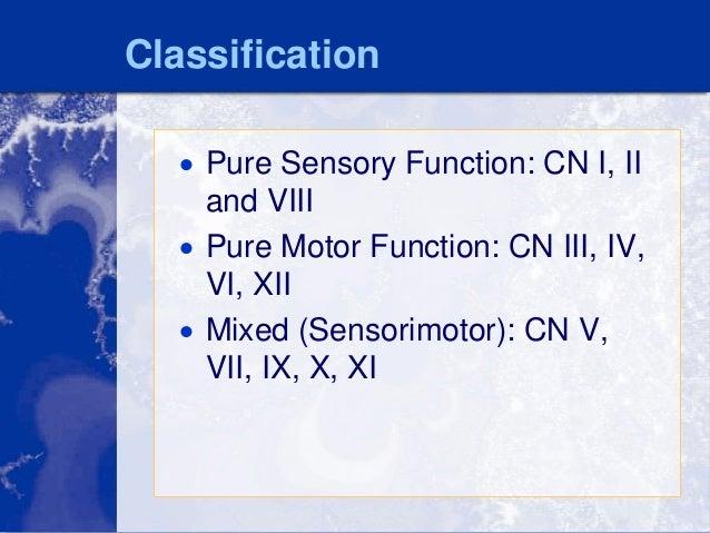 Motor function essay