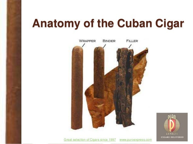 www.puroexpress.comGreat selection of Cigars since 1997 Anatomy of the Cuban Cigar