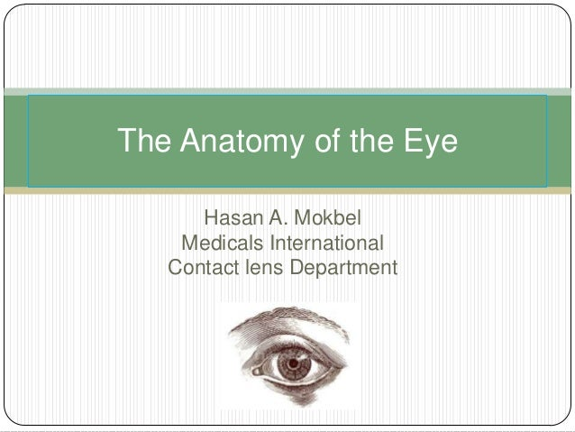 Hasan A. Mokbel Medicals International Contact lens Department The Anatomy of the Eye