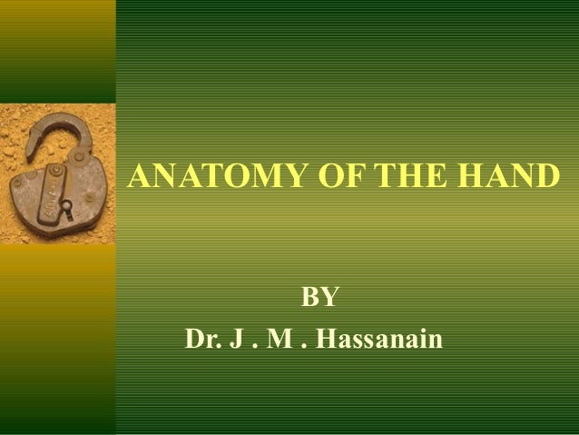 ANATOMY OF THE HAND            BY  Dr. J . M . Hassanain