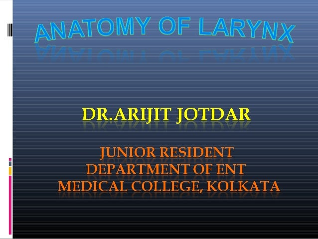 STRUCTURE OF THE LARYNX • Larynx is our VOICE BOX. • The Larynx extends from Laryngeal inlet above to the lower border of ...