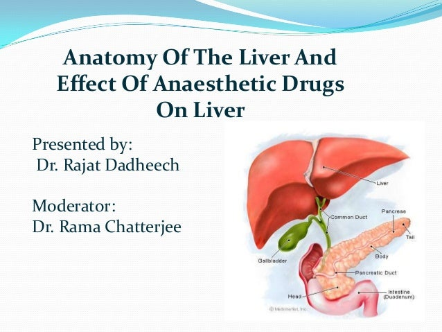 Anatomy Of The Liver And Effect Of Anaesthetic Drugs On Liver