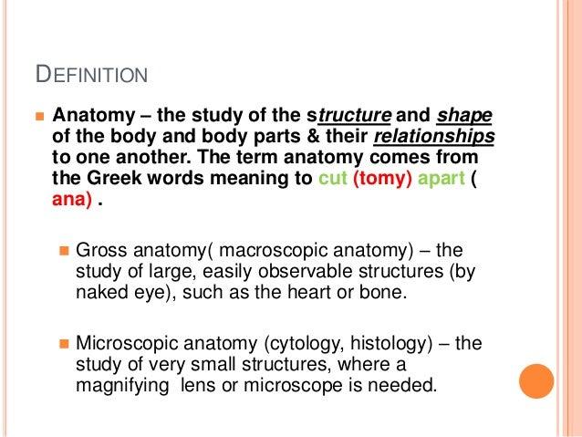 Basics Of Physiology