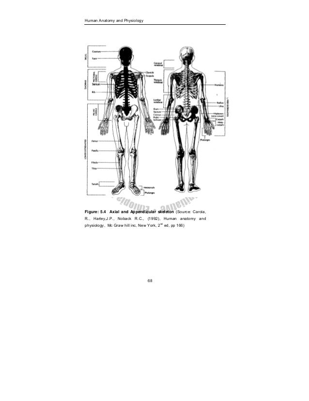 Charmant Anatomy And Physiology Of Human Body Book Fotos ...