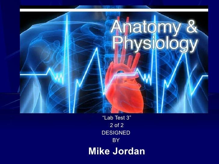 """ Lab Test 3"" 2 of 2 DESIGNED  BY  Mike Jordan"