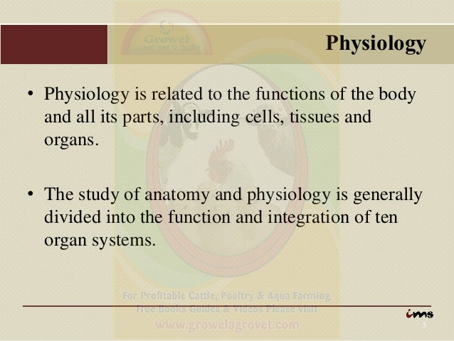 Anatomy Physiology Of Animals