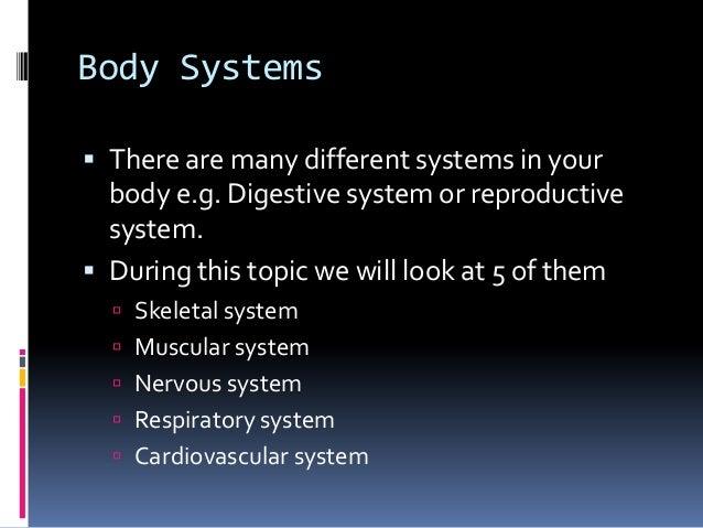 Anatomypowerpoint Slide 3